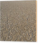 Alvord Desert, Oregon Wood Print