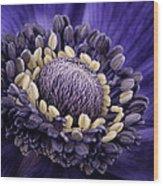 Anemone Wood Print