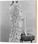 Ann-margret, Ca. Mid-1960s Wood Print