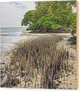 Anne's Beach-2 Wood Print