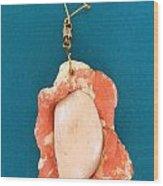 Aphrodite Earring Wood Print