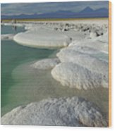 Atacama Salt Lake Near San Pedro De Wood Print