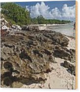 Beach At Coco Cay Wood Print