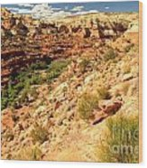 Calf Creek Falls Canyon Wood Print