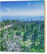 Clingmans Dome - Great Smoky Mountains National Park Wood Print