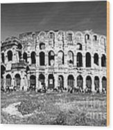 Colosseum Wood Print by Stefano Senise