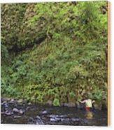 Columbia River Gorge, Oregon, Usa Wood Print