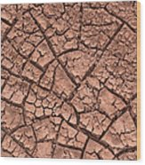 Cracked Dry Clay Wood Print