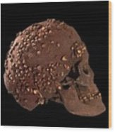 Cro-magnon Fossil Skull Wood Print