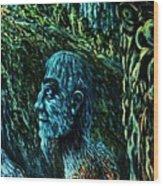 Detail From Shaman Wood Print