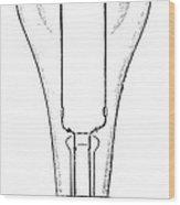 Edison Lamp, 19th Century Wood Print