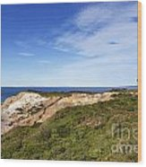 Gay Head Lighthouse Wood Print