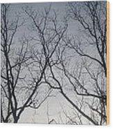 God Made Trees Wood Print
