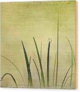 Grass Wood Print by Svetlana Sewell