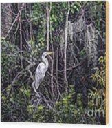 Heron Colors Wood Print