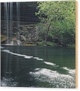 Hamilton Pool Nature Preserve Wood Print