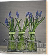 Hyacinth Still Life Wood Print