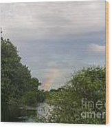 IImages From The Pantanal Wood Print