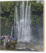 Iquazu Falls - South America Wood Print