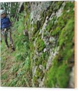 Keketuohai Park, China China Climbing Wood Print
