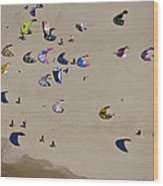 Kitesurfing, Tel Aviv Wood Print by Ofir Ben Tov