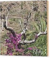 Landscape-canarian Volcanic Mountains Wood Print