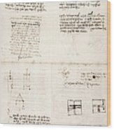 Leonardo Da Vinci's Notes Wood Print