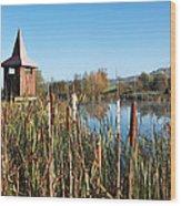 Lower Bruckland - Devon Wood Print