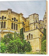 Malaga Cathedral In Andalusia Wood Print
