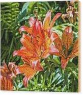 Orange Lilium Wood Print