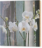 4 Orchidee Wood Print