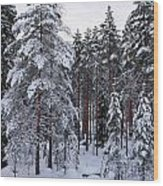 Pine Forest Winter Wood Print
