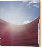 Qatar Flag Wood Print