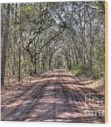 Road To Angel Oak Wood Print