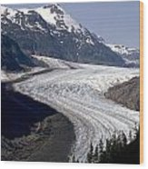 Salmon Glacier Wood Print