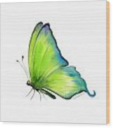 4 Skip Green Butterfly Wood Print