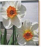 Small-cupped Daffodil Named Barrett Browning Wood Print