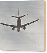Southwest Airplane Boeing 737  Picture E Wood Print