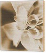 Spring 2014 Wood Print