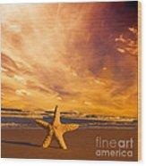 Starfish On The Beach At Sunset Wood Print