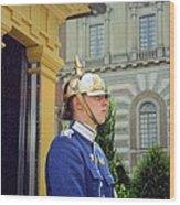Stockholm Guard Change Wood Print
