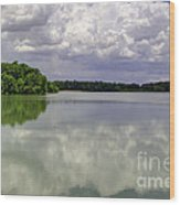 4-summer Time At Moraine View State Park Wood Print