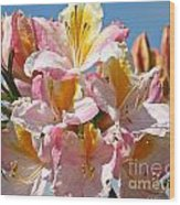 Sunny Petals Wood Print