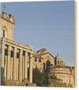 The Roman Forum Wood Print