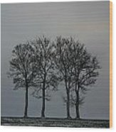 4 Trees In A Winters Landscape Wood Print