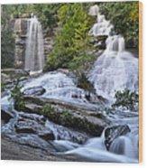 Twin Falls Wood Print