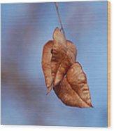 #withinmealunaticsings Wood Print