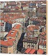 View Of Turin Wood Print