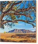 Wilpena Pound Wood Print