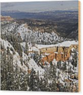 Winter Scene, Bryce Canyon National Park Wood Print